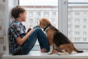 Boy and beagle on windowsill.