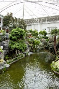 Waterfalls and gardens at Gaylord Opryland Hotel