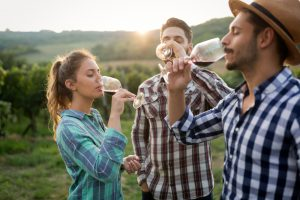 Three people drinking wine in a vineyard.