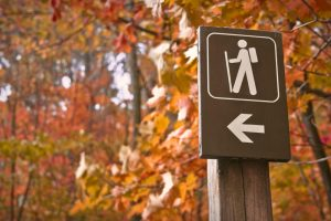 Sign point towards pedestrian walking trail with trees behind it.
