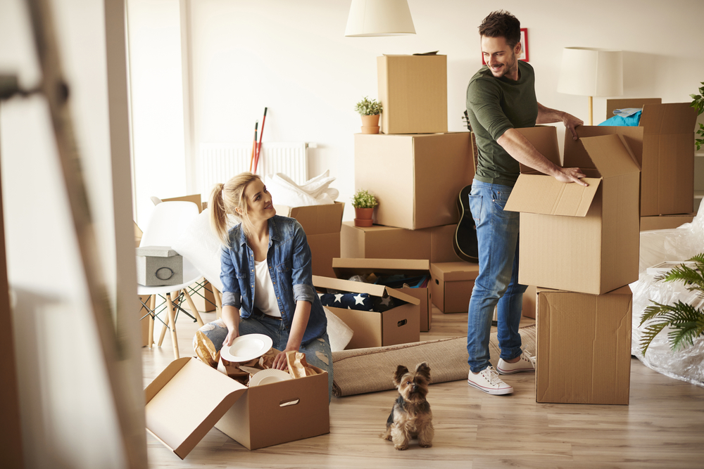 Honey, I'm Moving In: Living With Your Significant Other