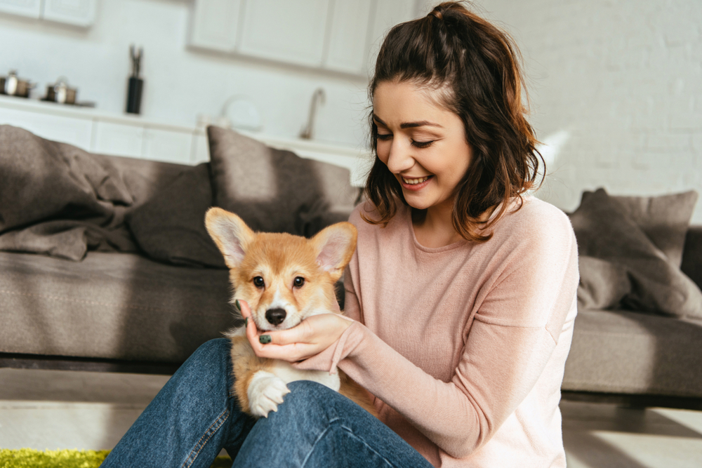 Adulting 101: Owning a Pet in an Apartment
