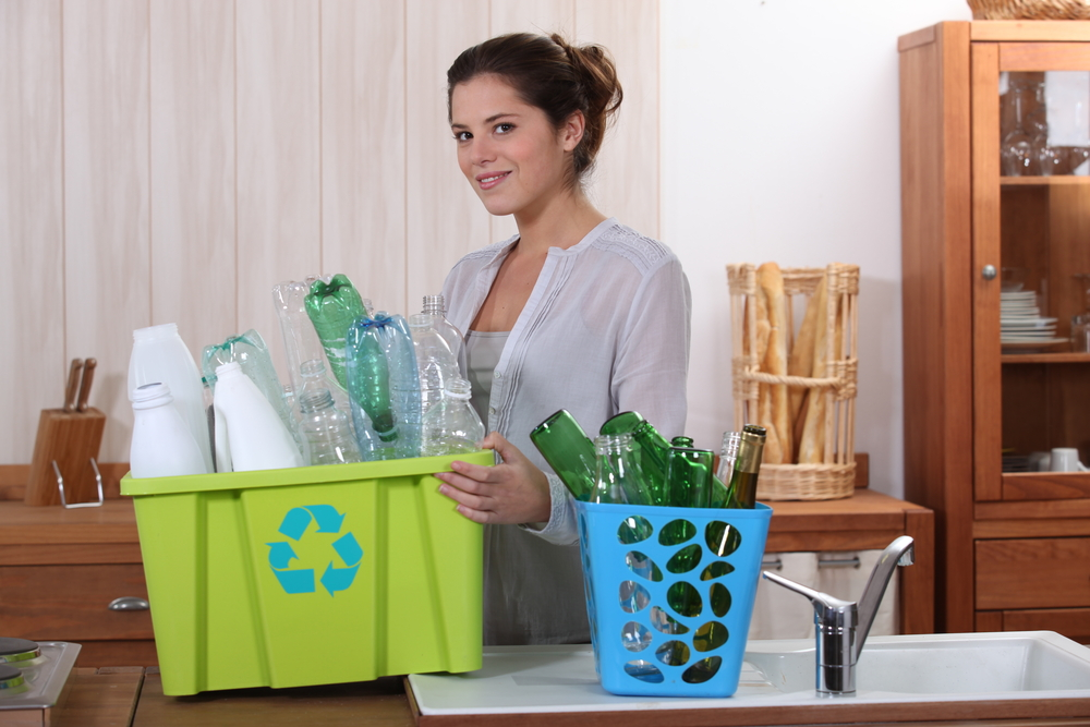 5 Ways to Go Green in an Apartment